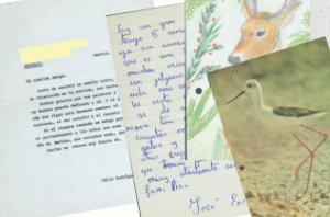 Cartas enviadas a Félix Rodríguez de la Fuente.