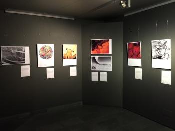 El arte que se esconde tras la ciencia en 49 fotos