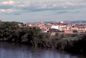 Vista de Pradilla del Ebro. / Foto: Ayuntamiento de Pradilla.