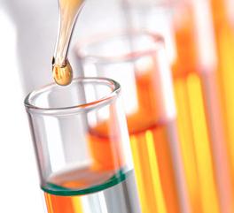 Científicos españoles reciben subvenciones europeas.