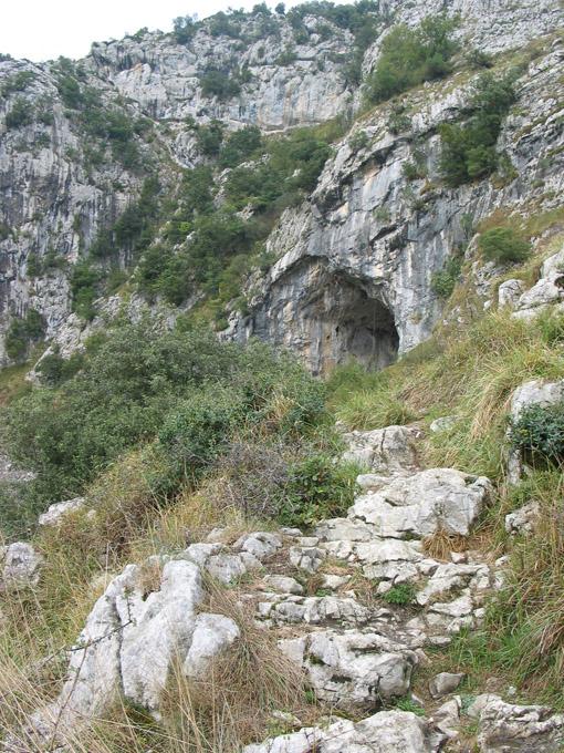 Hallan vestigios de flores depositadas en una tumba del Paleolítico