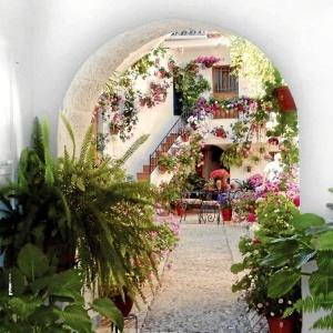 Un total de 51 espacios participan en el primer Concurso de Patios y Rincones de la Provincia de Córdoba