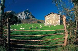 El turismo rural gana adeptos. / Foto: escapadarural.com