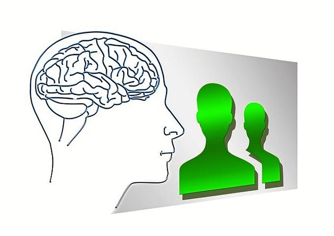 Según García Ruiz, nuestro cerebro nunca deja de reorganizarse a sí mismo, aunque esto, dependa de la estimulación recibida./ Foto: pixabay.com