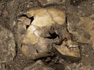 Para este estudio se ha analizado ADN antiguo. / Foto: Europa Press.