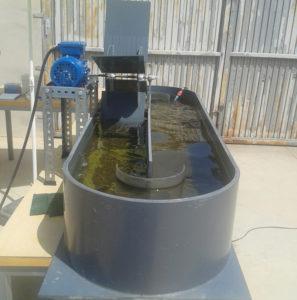 Reactor de carrusel.