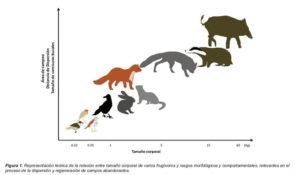 Foto: Asociación Española de Ecología terrestre.
