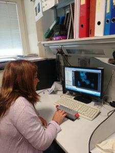 La investigadora Elena Fernández observando imágenes de células tomadas con el microscopio para estudiar el efecto de LRRK2 sobre ellas.