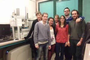 El grupo de investigadores participantes en este proyecto.