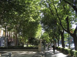 Paseo del Prado. / Foto: Tnarik