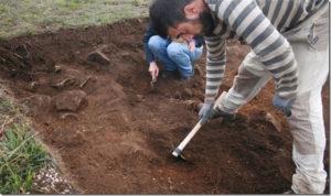 Comienzo de las excavaciones.