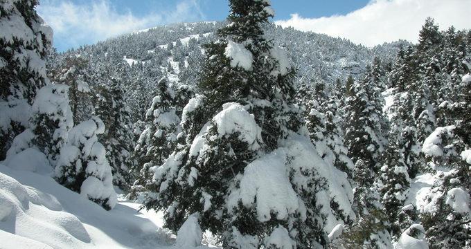 Inician el proceso para declarar el Parque Nacional de La Sierra de las Nieves