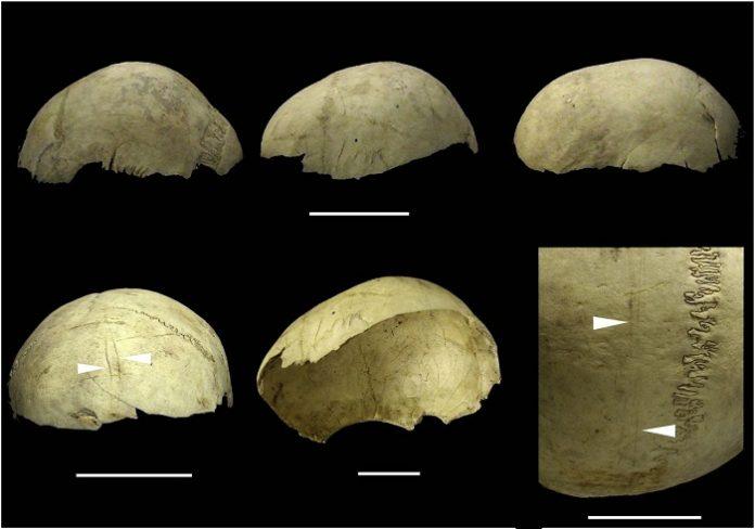 La conversión de cráneos humanos en copas, un ritual extendido hasta la edad del Bronce