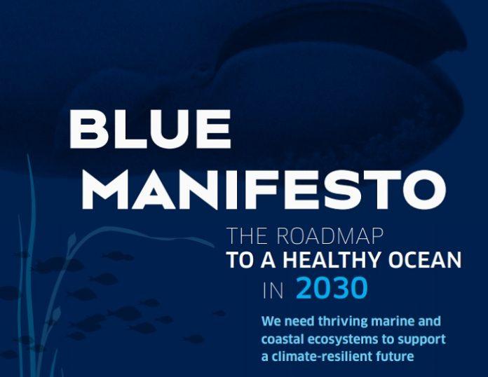 ONG ambientales tienen un plan para que el océano esté sano en 2030