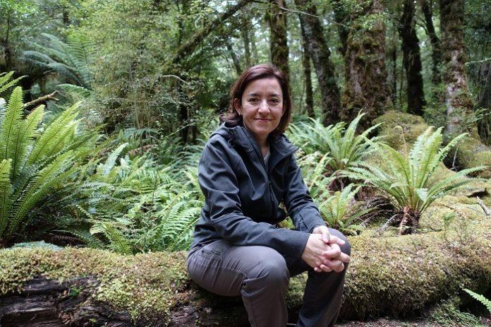 Paleontóloga aragonesa arroja nuevos datos sobre el origen de Zelandia