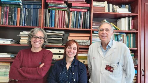 Localizan circuito cerebral que podría indicar riesgo a desarrollar Alzheimer