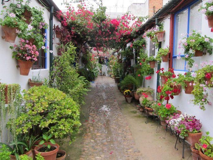 Córdoba celebrará en octubre una edición especial de sus Patios