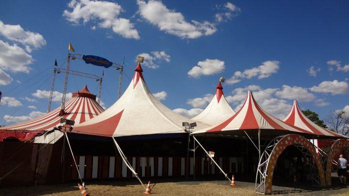 Castilla-La Mancha prohibe los espectáculos circenses con animales salvajes