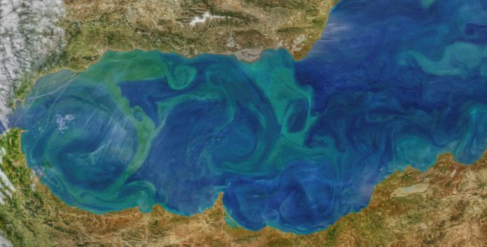 Trayectoria del agua entre la superficie y la profundidad del océano